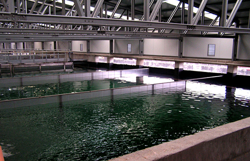 CITY WASTE WATER TREATMENT PLANTS